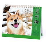 【2021年版・卓上】 アートプリントジャパン 犬川柳カレンダー
