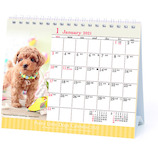 【2021年版・卓上】 アートプリントジャパン 仔犬カレンダー