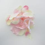 ローズペタル ピンク/クリーム