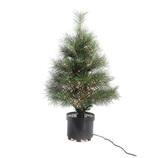 【クリスマス】 エリート パイン ヌードファイバーツリー 高さ60cm