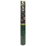 菊池襖紙工場 黒板シート 45cm×1.5m 11430 グリーン