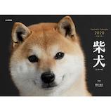 【2020年版・壁掛】山と溪谷社 柴犬 854510