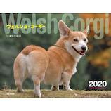 【2020年版・壁掛】山と溪谷社 ウェルシュ・コーギー 854570