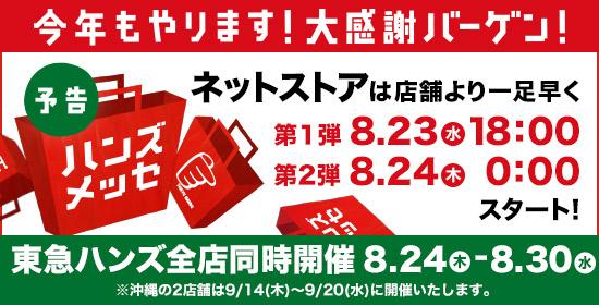 【2017メッセ 予告ページ】